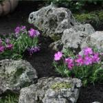 Realizzazione aiuole giardini rocciosi Milano